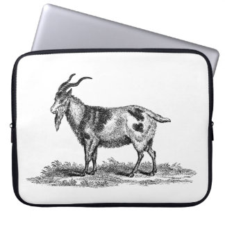 Vintage Domestic Goat Illustration - 1800's Goats Laptop Sleeve