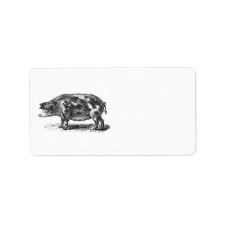 Vintage Domestic Hog Illustration - 1800's Pig Label