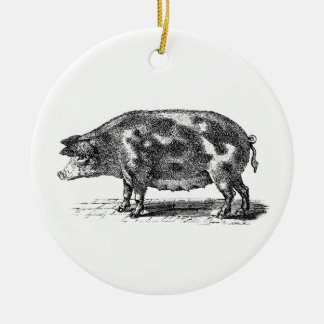 Vintage Domestic Pig Illustration - 1800's Hogs Christmas Ornament