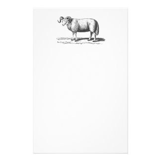 Vintage Domestic Sheep Illustration - 1800's Ram Stationery