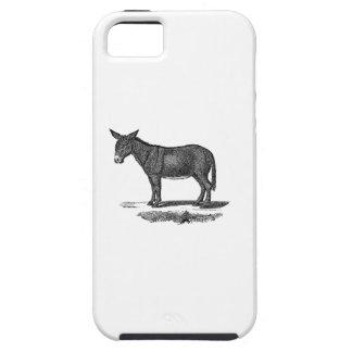 Vintage Donkey Illustration -1800's Donkeys iPhone 5 Case