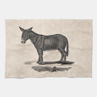 Vintage Donkey Illustration - 1800's Donkeys Tea Towel