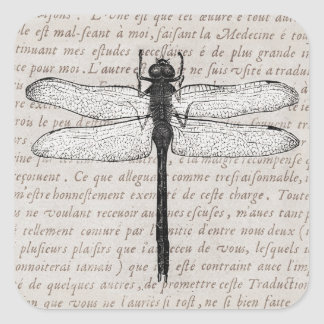 Vintage Dragonfly and Antique Text Collage Square Stickers