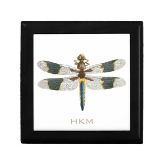 Vintage Dragonfly Drawing Antique Insect Artwork Small Square Gift Box