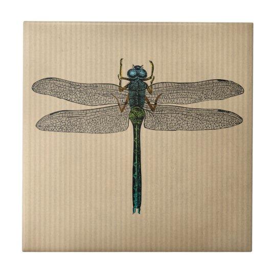 Vintage Dragonfly Illustration Tile