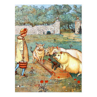 Vintage Drawing: Feeding the Pigs Postcard