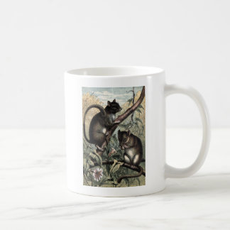 Vintage Drawing: The Dormouse Coffee Mugs