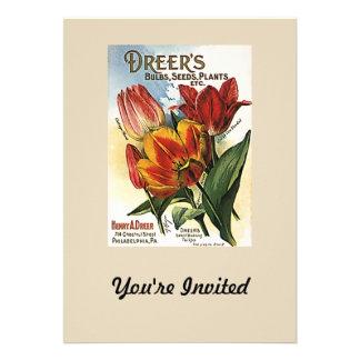 Vintage Dreer's Tulip Bulbs Announcement