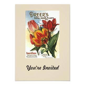 Vintage Dreer's Tulip Bulbs 5x7 Paper Invitation Card