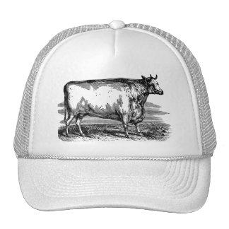 Vintage Durham Cow Bull Personalized Illustration Mesh Hat