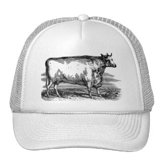 Vintage Durham Cow Bull Personalized Illustration Mesh Hat