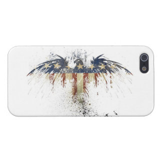 Vintage Eagle Flag America iPhone 5/5S Case