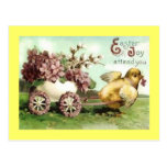Vintage Easter Chick Carriage Postcard