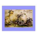 Vintage Easter Chick & Violets Postcards
