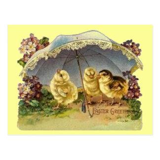 Vintage Easter Chicks Parasol Post Cards