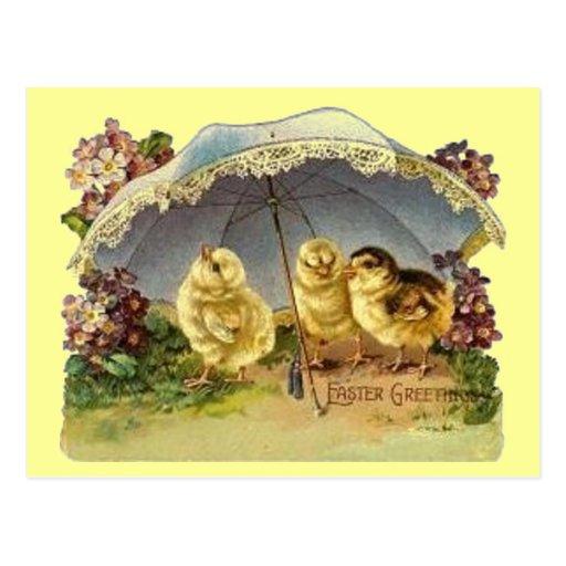Vintage Easter Chicks & Parasol Post Cards