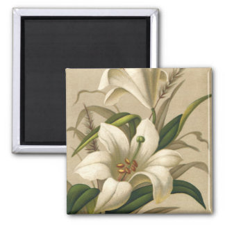 Vintage Easter, Victorian Lily Flowers in Bloom Square Magnet