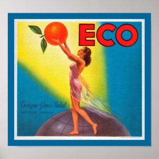Vintage Eco Orange Label Posters