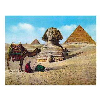 Vintage Egypt, Excavated Sphinx, Giza Postcard