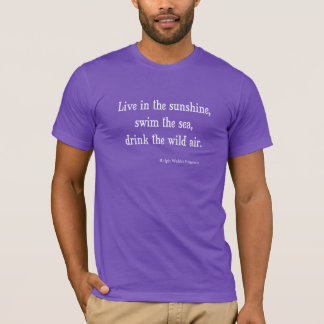 Vintage Emerson Live in Sunshine Quote T-Shirt