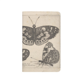Vintage Entomology Butterfly Field Notes Nature Journal