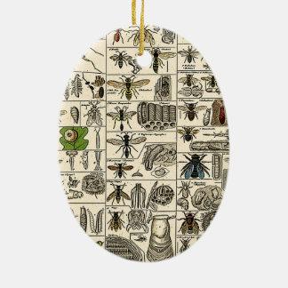 Vintage Entomology Christmas Ornament