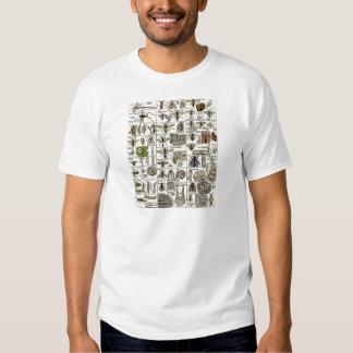 Vintage Entomology Tshirt