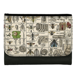 Vintage Entomology Women's Wallets