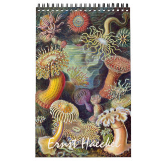 Vintage Ernest Haeckel, Biology, Botany, Science Wall Calendar