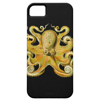 Vintage Ernst Haeckel Octopus in Yellow iPhone 5 Cover