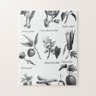 Vintage exotic fruit etching puzzle