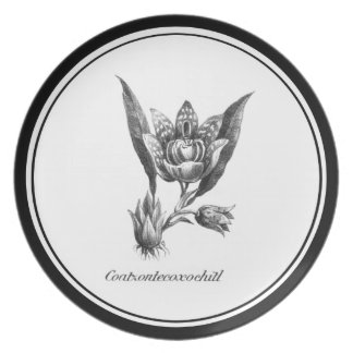 Vintage exotic orchid flower etching plate