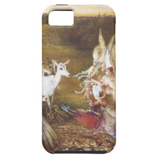 Vintage Fairy The Enchanted Forest iPhone 5 Covers