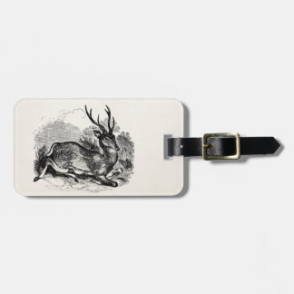Vintage Fallow Deer Buck Personalized Illustration Luggage Tag