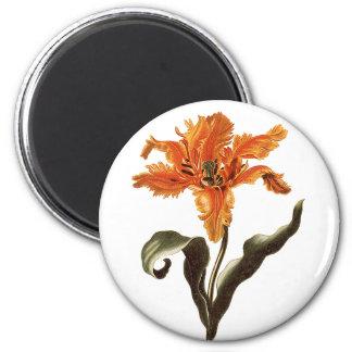 Vintage Fancy Orange Lily in Bloom, Garden Flowers 6 Cm Round Magnet