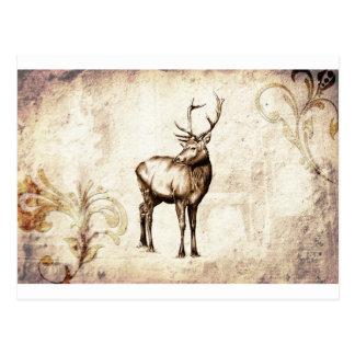 Vintage fineart F077 deer Post Cards