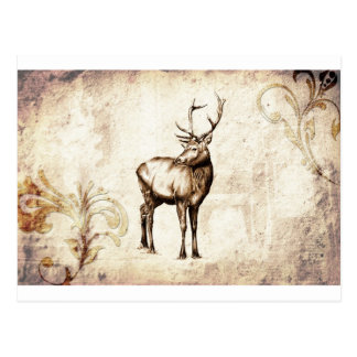 Vintage fineart F077 deer Postcard