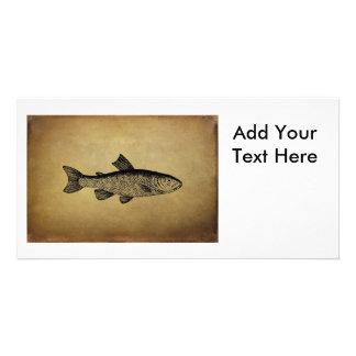Vintage Fish Illustration Customized Photo Card