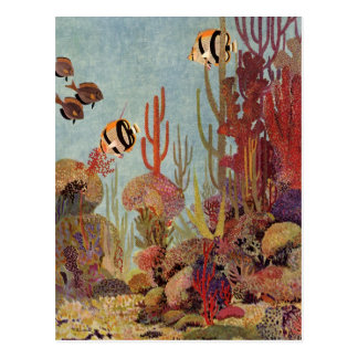 Vintage Fish in Ocean, Tropical Coral Angelfish Postcard