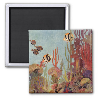 Vintage Fish in Ocean, Tropical Coral Angelfish Square Magnet