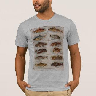 Vintage Fish of Unusual Interest Webster 1911 T-Shirt