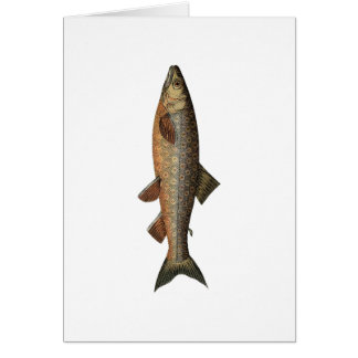 Vintage Fishing Fathers Day Greeting Card