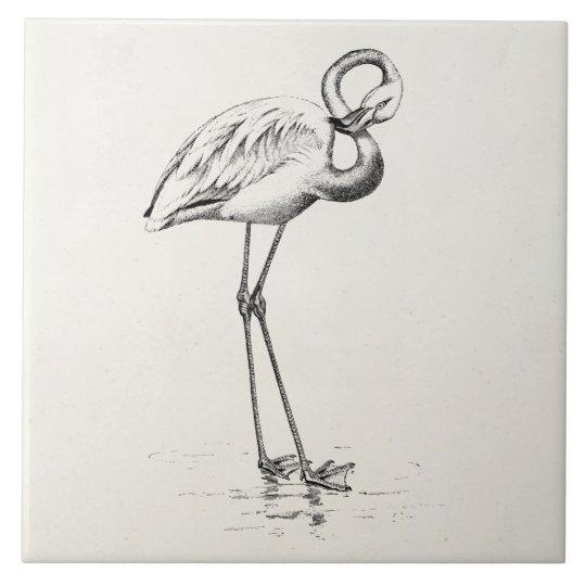 Vintage Flamingo Bird Antique Bird Template Tile