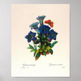 Vintage Floral Art Poster