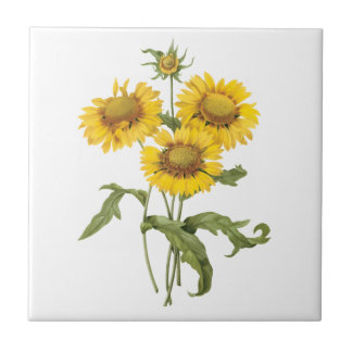 Vintage Floral Blanket Flower Sunflower by Redoute Tile