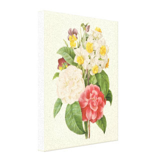 Vintage Floral Camelia Daffodil Flowers by Redoute Canvas Print