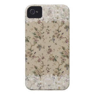 Vintage Floral Lacy Lady iPhone 4 Case