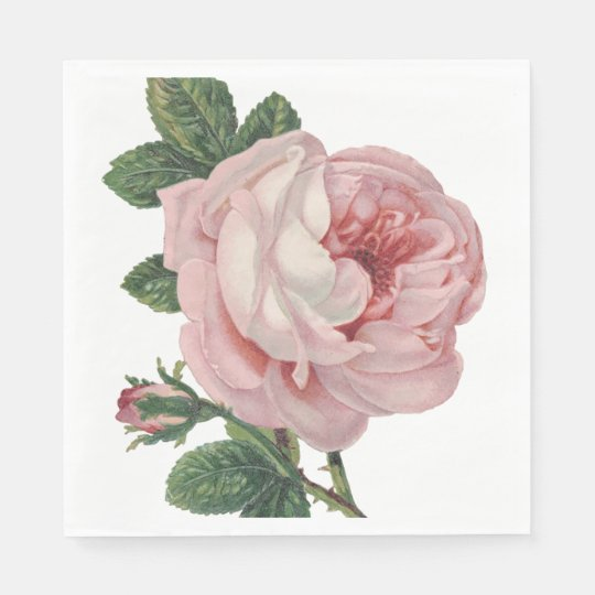 Vintage Floral Pink Rose Flower Shabby Chic Disposable