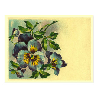 Vintage Floral Post Card