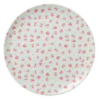 Vintage floral roses pink shabby chic rose flowers party plate